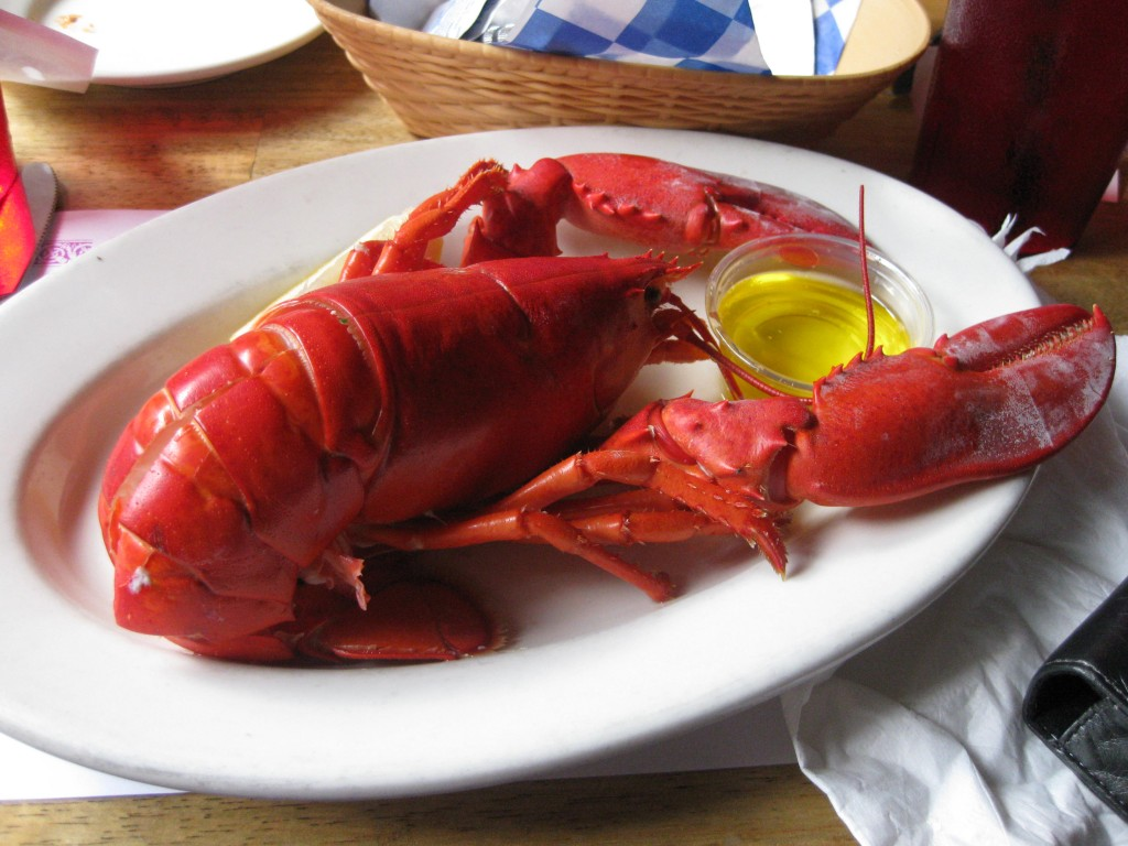 Steamed lobster Boston sports teams travel tips